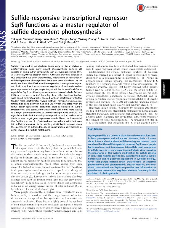 The sulfide-responsive transcriptional repressor SqrR functions as a master regulator of sulfide-dependent photosynthesis